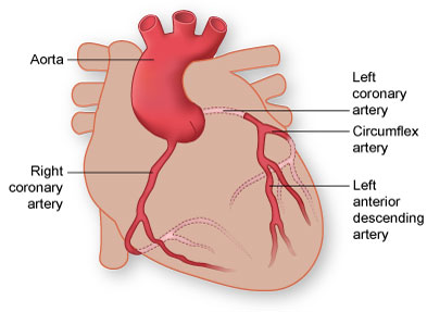 Cardiovascular Surgery in Pune